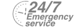 24/7 Emergency Service Pest Control in Tulse Hill, West Norwood, SE27. Call Now! 020 8166 9746
