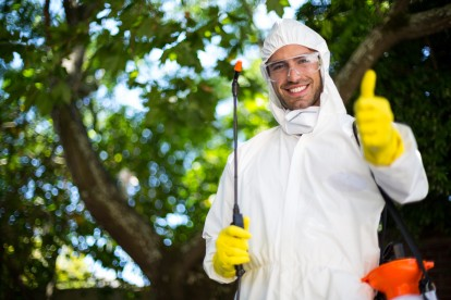 Pest Control in Tulse Hill, West Norwood, SE27. Call Now 020 8166 9746